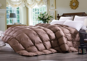 queen size down comforter on sale