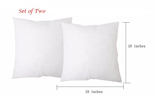 Set of 2 Square Sham Pillow Insert TRUE SIZE 18x18 Made in USA (Perfect for 18x18 Pillow Cover)