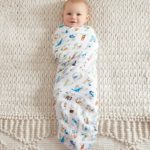aden + anais swaddle 4 pack, paper tales 2